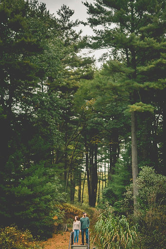 a wide photo of a couple holding hands in the woods