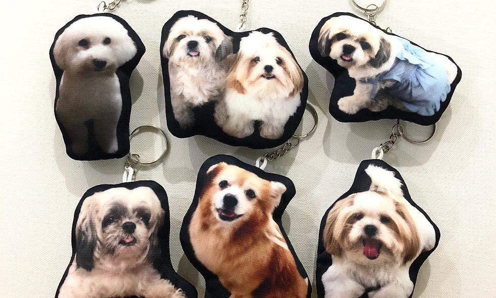 Pet Keychain