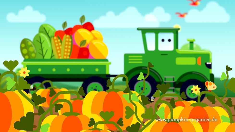 creativeshit_pumpkinorganics_4.jpg