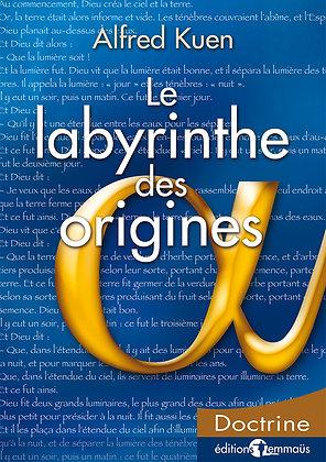 Labyrinthe des origines (Le)