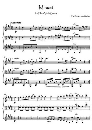 Minuet trio for Flute Viola Guitar music score download