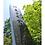 Thumbnail: 現代品種の大先祖「亀の尾」