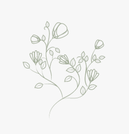 floral green drawing.png