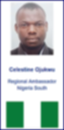 Celestine Web Image.png