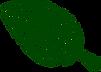 transparent - leaf_edited.png