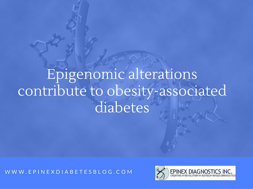 Epigenomic alterations contribute to obesity-associated diabetes