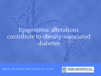 """Epigenomic alterations contribute to obesity-associated diabetes"""