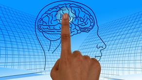 Conflits de couples: nos neurones apprécient la médiation