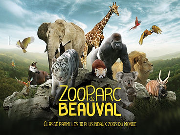 Zoo de Beauval.jpg
