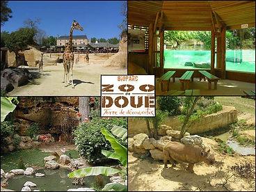 Zoo_Doué_la_Fontaine.jpg