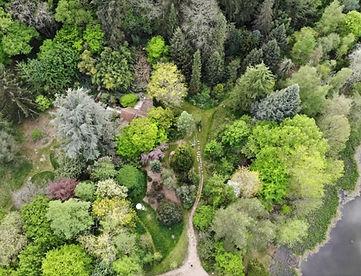 arboretum_de_la_martinière.jpg