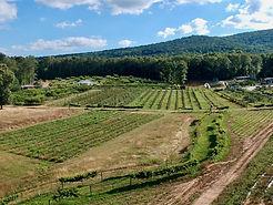 holmestead-farm-talaldega-clay-county-al
