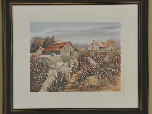 Barn and Cottonfield