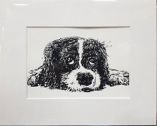 Small Puppy Dog Eyes