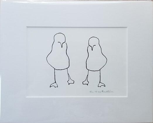 Small Gulls