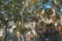 F1460002_edited.jpg