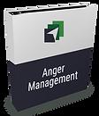 anger-management_large.png