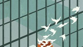 მსჯავრდებულის რესოციალიზაცია, როგორც სასჯელის უმთავრესი მიზანი