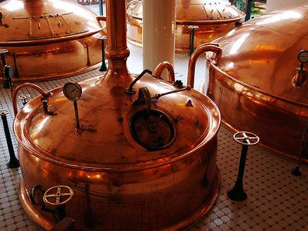 Boiler System in Distillery