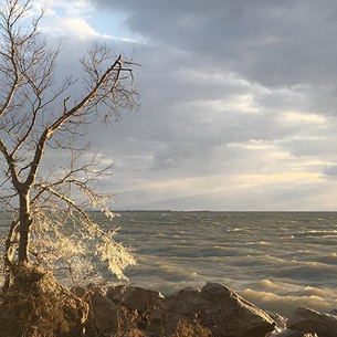 Point Pelee National Park, March 2018
