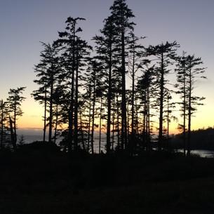 Vancouver Island, April 2016