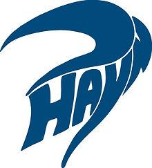hayn marine logo.jpg