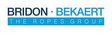 BBRG logo.jpg