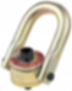 swivel hoist ring.png