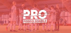 PRO Fodboldskole er for fodboldglade drenge og piger på alle niveauer, og de finder sted i København, Storkøbenhavn, Nordsjælland, Fyn og Jylland i uge 26-31 af sommerferien.  PRO Fodboldskole, der er en seriøst konkurrent til DBU Fodboldskole og DGI Fodboldskole, afholder desuden også fodboldskoler i vinterferien, påskeferien, efterårsferien og juleferien.  Værtsklubberne Allerød FK, Vallensbæk IF, Borup IF, BK Fix, Herlev IF, IS Skævinge, Ringsted IF, B1913, Albertslund IF, Herstedøster IC, BS72, Hvalsø IF, Rosenhøj BK, Tårnby FF, Ballerup FC Lundegåden, Glostrup FK, BK Hekla, BK Vestia, Fløng-Hedehusene Fodbold, Solrød FC og Hafnia-Hallen, Valby står klar til at byde spillerne velkommen i sommerferien 2022, hvor den står på sjov, lærerig og udviklende fodboldtræning, i selskab med venner og holdkammerater.