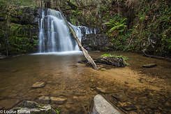 Lilydale-Falls-Upper-IMG_4067.png