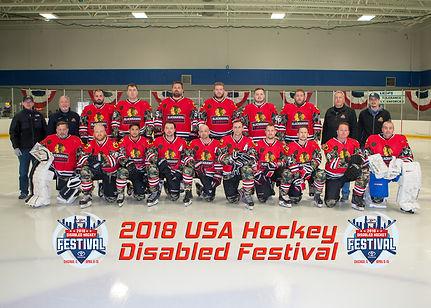 DHF Warriors Team A 2018.jpg