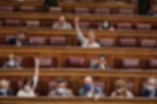 spain-congress-minimum-income-covid-coro