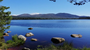 Bothy Diaries part 1: Moving to Scotland and the coming of COVID