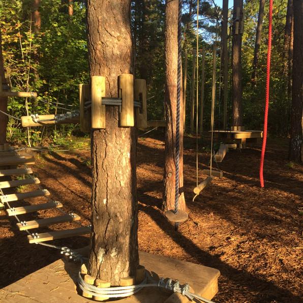 Treetop ehitus