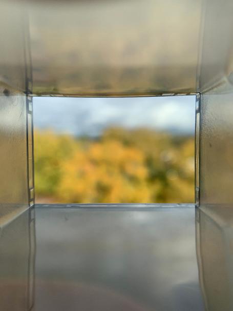 Liz: Original Fall Landscape 2