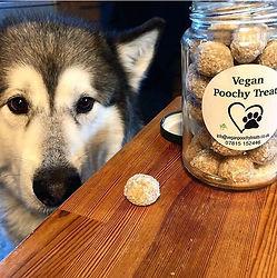 Vegan Poochy Treats