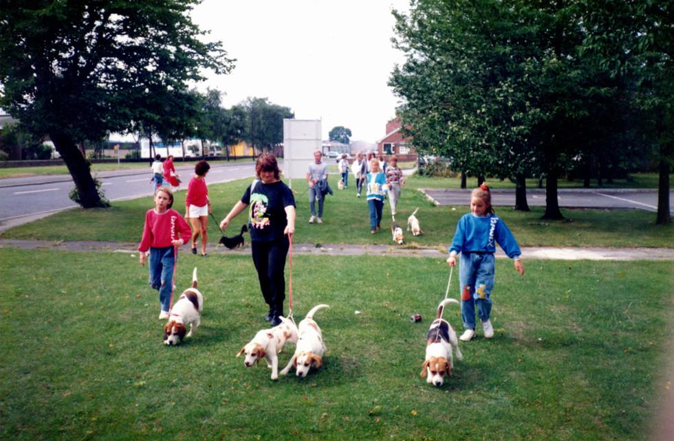 A Walk For Beagle Welfare