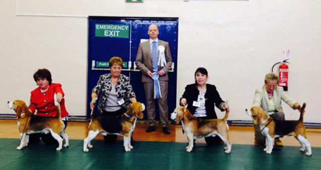 dog winners.jpg