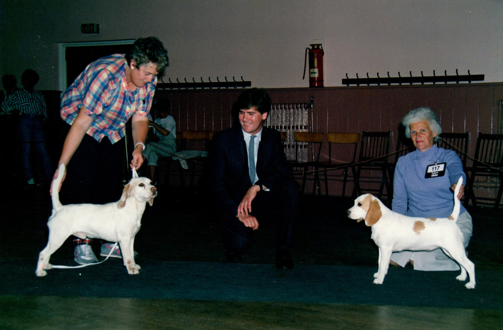 FCBC Summer Open Show - 9th July 1989