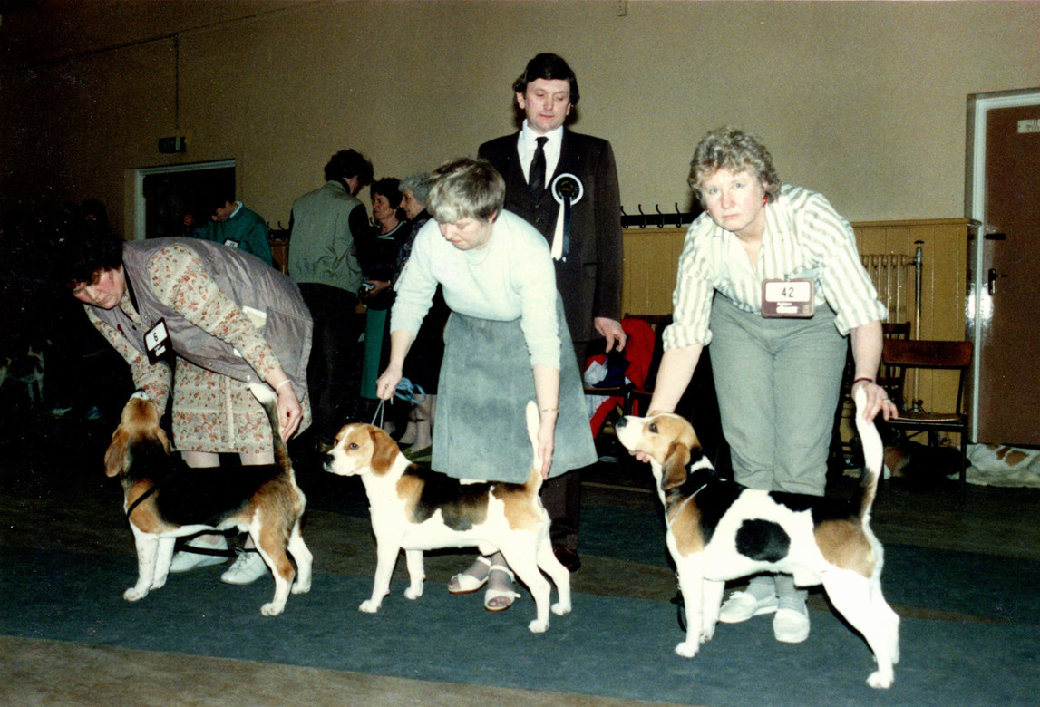 FCBC 15th Championship Show - 6th March 1988