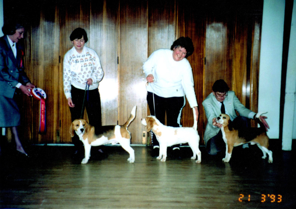 FCBC Championship Show - 21st March 1993