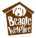 Beagle-Welfare.png