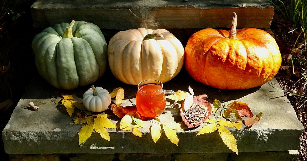 PumpkinFall.jpeg