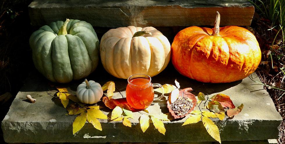 PumpkinFall_edited.jpg