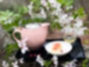 CherryBlossom2020.jpg
