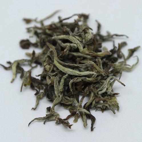 nepal maipokhari white tea