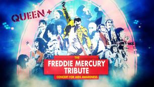 A 29 años del tributo a Freddie Mercury en Wembley