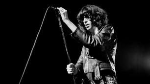 El 29 de enero de 1952 nace en Hungría el músico Tommy Ramone