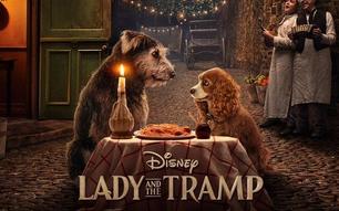 El 12 de noviembre Disney estrenará la remake de 'La Dama y el Vagabundo'