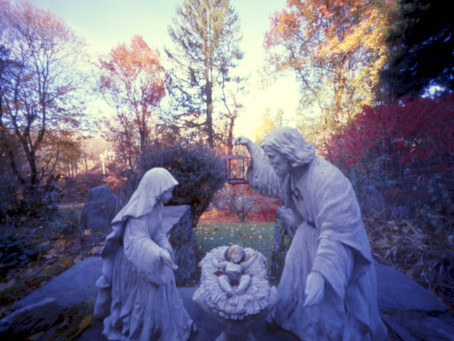 Fridays of Advent: Reflections on Longing 3